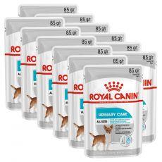 Royal Canin Dermacomfort Dog Loaf vrečka s pašteto za pse s težavami z ledvicami 12 x 85 g