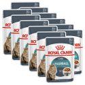 Vrečka z mačjo hrano Royal Canin HAIRBALL CARE 12 x 85 g