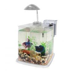 Plastičen akvarij Classica Deluxe Paradise 6,4 L