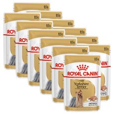 ROYAL CANIN ADULT YORKSHIRE 12 x 85 g - vrečka
