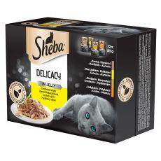 Hrana v vrečki Sheba, izbor perutninskega mesa v želatini 12 x 85g
