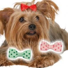 Barvne pentlje za pse - 3,5 cm