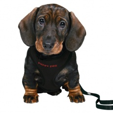 Oprsnica in povodec za pse - črne barve