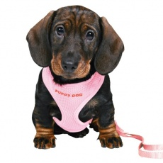 Oprsnica in povodec za pse - roza