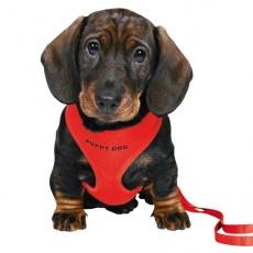 Oprsnica in povodec za pse - rdeče barve