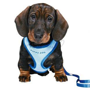 Oprsnica in povodec za pse - modre barve