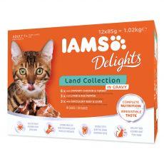 Iams Cat Multibox vrečke s hrano iz mesa 12 x 85 g