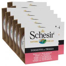 Schesir cat tuna in bradač v želatini 12 x 85 g