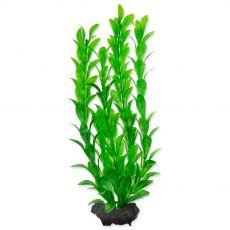 Rastlina TETRA Hygrophila M 23 cm
