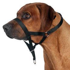 Vzgajalna pasja ovratnica z nagobčnikom - L-XL, 37 cm