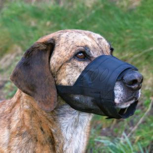 Nagobčnik za pse - mrežasta podloga, velikost 3