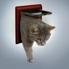 Loputa za mačke z 2 načinoma zaklepanja – rjava
