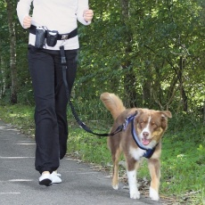 Pas s povodcem za pse do 40 kg