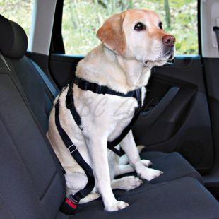 Varnostna oprsnica za psa za varno vožnjo - M, 50-70 cm