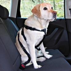 Varnostna oprsnica za psa za varno vožnjo - XL, 80-110 cm