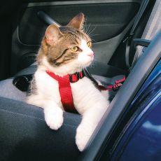 Varnostna oprsnica za mačke - 20 - 50 cm