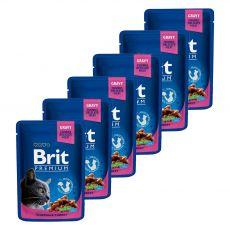 Vrečka BRIT Premium Cat Chicken & Turkey 6 x 100 g