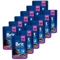 Vrečka BRIT Premium Cat Chicken & Turkey 12 x 100 g