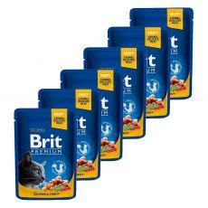 Vrečka BRIT Premium Cat Salmon & Trout 6 x 100 g