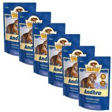 Wildcat Andhra vrečka 6 x 100 g