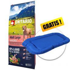 ONTARIO Adult Large - lamb & rice, 12 kg