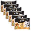 Vrečke Cesar izbor hran v želatini 6 x (4 x 100 g)