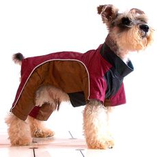 Enodelna obleka za psa – bordo-zlata, XS
