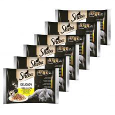 Sheba Delicacy Poultry izbor vrečk 6 x (4 x 85 g)