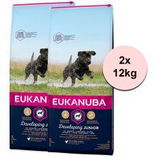 Eukanuba Developing Junior Large Breed 2 x 12 kg