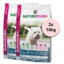 Eukanuba Nature Plus+ Adult Small Rich in freshly frozen Salmon 2 x 10 kg