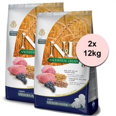 Farmina N&D dog LG PUPPY MEDIUM & MAXI Lamb & Blueberry 2 x 12 kg