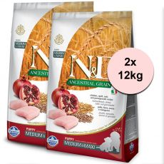 Farmina N&D dog LG Puppy MEDIUM & MAXI Chicken & Pomegranate 2 x 12 kg