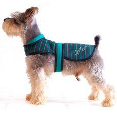Telovnik za psa – turkizno-črn, XL
