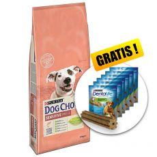 PURINA DOG CHOW SENSITIVE Salmon & Rice 14 kg + DARILO