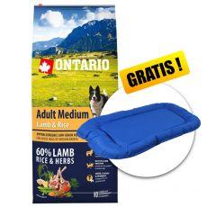 ONTARIO Adult Medium Lamb & Rice 12 kg + DARILO