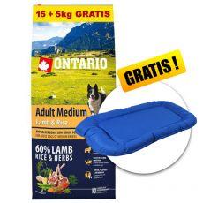 ONTARIO Adult Medium Lamb & Rice 15+5kg GRATIS+ DARILO