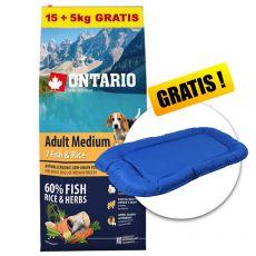 ONTARIO Adult Medium 7 Fish & Rice 15+5kg GRATIS+ DARILO