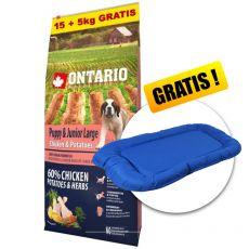ONTARIO Puppy & Junior Large - chicken & potatoes 15+5kg GRATIS+ DARILO