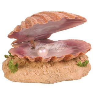 Okras za akvarije - školjka z biserom