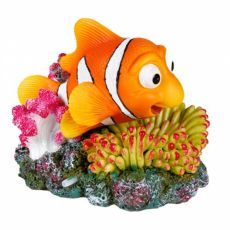 Okras za akvarije - Nemo v morski vetrnici