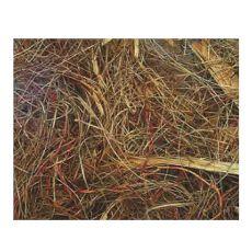 Gnezdilni material za agapornise - 50 g
