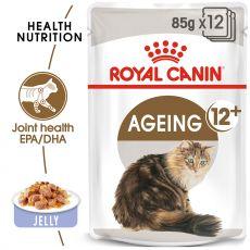 Royal Canin AGEING + 12 - vrečica 85g