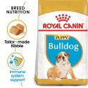 ROYAL CANIN ENGLISH BULLDOG JUNIOR - 12 kg