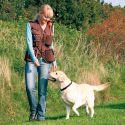 Brezrokavnik Dog activity, za šolanje psov - rjav, XL