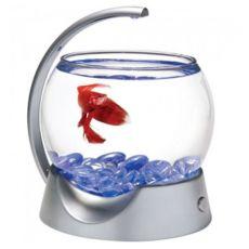Siv akvarij za bojne ribice, krogla 1,8 l