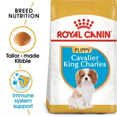 ROYAL CANIN CAVALIER KING CHARLES JUNIOR – 1,5 kg