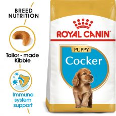 ROYAL CANIN COCKER JUNIOR – 3 kg