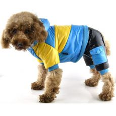 Pasja jakna – rumeno-modra, XS