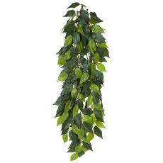 Ficus silk large - rastlina za terarij, 70cm
