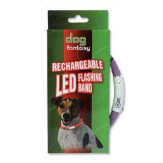 LED pasja ovratnica DOG FANTASY - vijolična, 70 cm